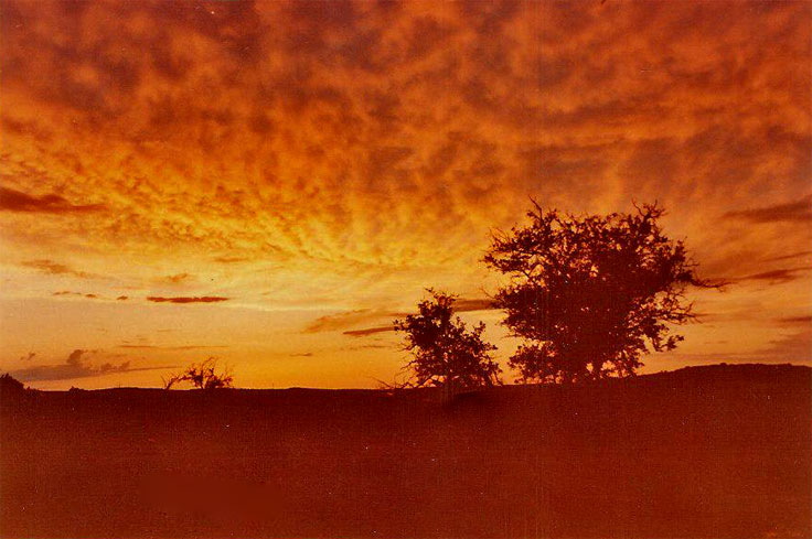 Picture taken from Convict Hill in Oak Hill on evening before Austin's Memorial Day flood May 24, 1981