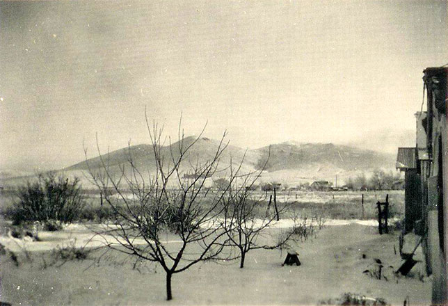 1946 snow at Theophilus home