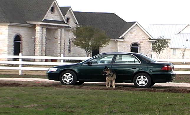picture of Bach with martin's Honda Accord