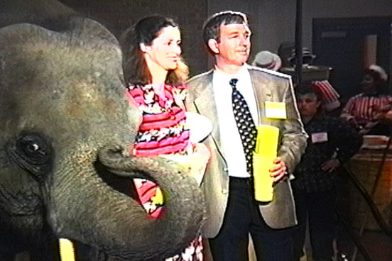 Elephant at DPM Lumberman's Association of Texas Event in San Antonio, Texas