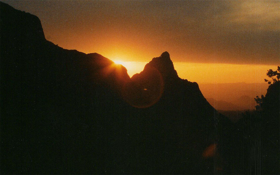 picture of Windo Big Bend National park