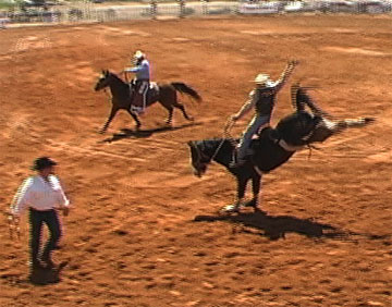 picture of rodeo at the Poteet Strawberry Festival