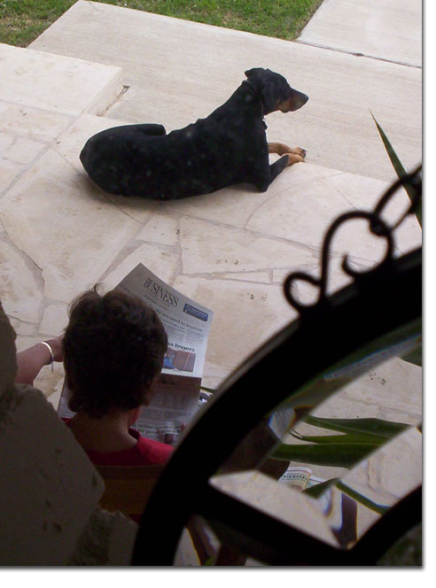 picture of Chris reading paper on front porch with Sasha March 10, 2005