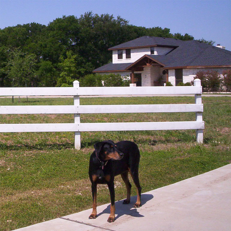 picture of Sasha in front of house June 2005