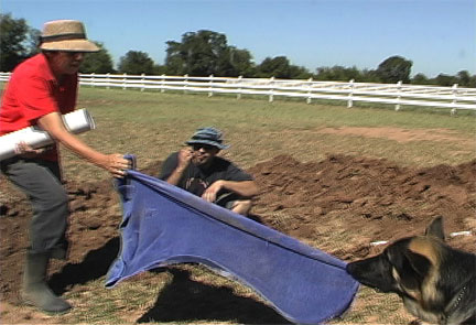picture of Ken and Chris working on pasture drain with help from Troubador
