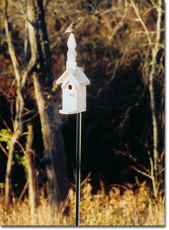 picture of bird house 12/03